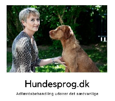 Hundesprog